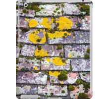 Background of old roof covered with tiles iPad Case/Skin