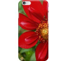 Modern Day Dahlia iPhone Case/Skin