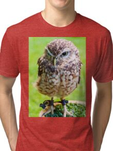 Close up portrait of little Owl against green background Tri-blend T-Shirt