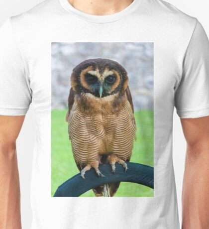 brown wood Owl Unisex T-Shirt