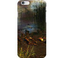 River Runes iPhone Case/Skin