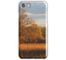 Late Fall iPhone Case/Skin