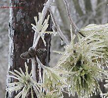 The Ice Tree by Nicole Schmidt