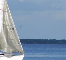 Sailboat on Lake Monroe Sticker