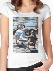 Beautiful swan familiy with nestlings in lake Women's Fitted Scoop T-Shirt