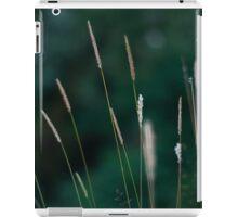 riverside  iPad Case/Skin
