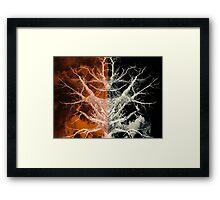 Bleached Bones of the Symmetrical Tree Framed Print
