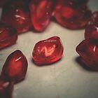 Seed by Zak Milofsky