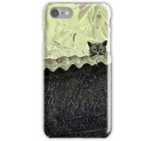Kitty Kitten !! iPhone Case/Skin