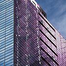 Purple by DianaC