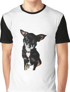Chachi the Chihuahua  Graphic T-Shirt