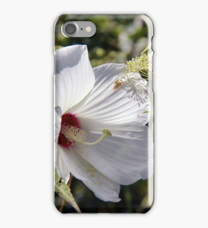Hibiscus in its Glory iPhone Case/Skin