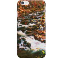MIDDLE PRONG LITTLE RIVER,AUTUMN iPhone Case/Skin
