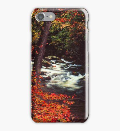 LITTLE RIVER,AUTUMN iPhone Case/Skin