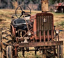 Grandpa's Tractor by Adam Northam