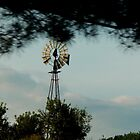 Windmill Set by WildThingPhotos