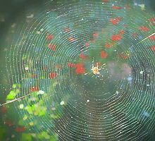 Autumn  web by OlaG