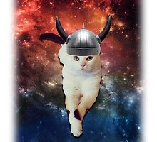 Cats in Viking Hats by Dudleyshwam