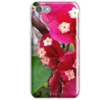 Right at Home - Amongst the Bouganvilles! iPhone Case/Skin