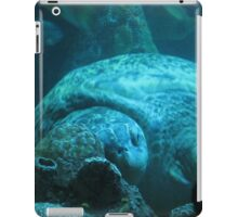 Sleepy Turtle iPad Case/Skin