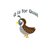 Q is for Quail by Eggtooth