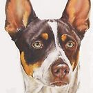 Rat Terrier by BarbBarcikKeith