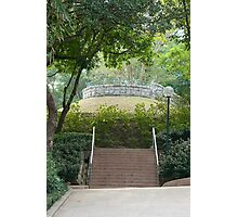 Kowloon Park, Hong Kong Photographic Print