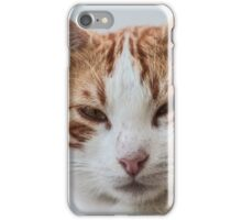 Ginger, the stray cat iPhone Case/Skin