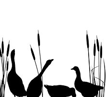 Goose silhouettes by Richard Laschon