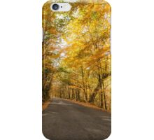 Autumn, Geres, Portugal iPhone Case/Skin