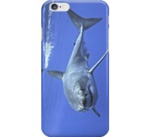 The Young White Turns (cases) iPhone Case/Skin