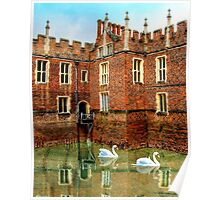 Swans Rule Hampton Court Poster