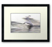 The Swan #2 Framed Print