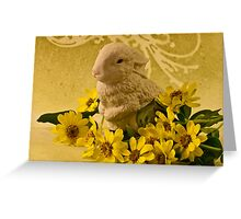 Bunny And Daisies  Greeting Card