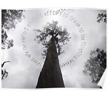 Tree Quotation Poster