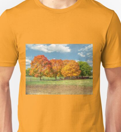 Shade Of The Autumn Trees Unisex T-Shirt