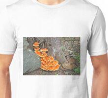 Chicken Of The Woods Fungi - Laetiporus sulphureus Unisex T-Shirt