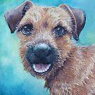 Border Terrier by Redbarron