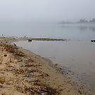 Beach In The Fog by WildestArt