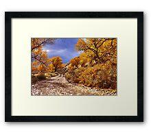 High Desert Autumn Framed Print