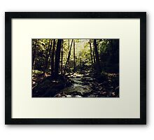 cascades, 2 Framed Print