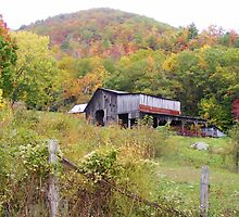 OLD COUNTRY BARN & FALL FOLIAGE COLORS IN THE BACK HILLS OF TENNESSEE by CHERIE COKELEY