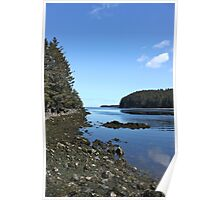 Alaskan Beach Photography Print Poster
