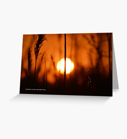 Sunset Cut In Half | East Moriches, New York  Greeting Card