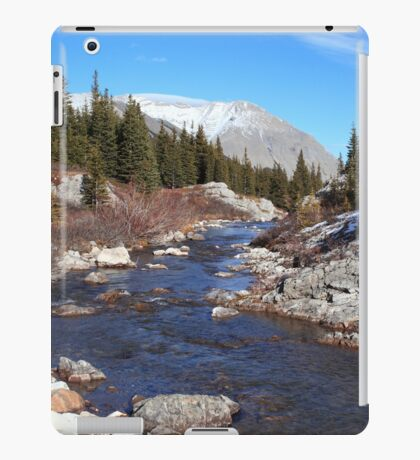 Creek in the valley iPad Case/Skin