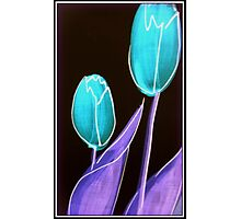 Turquoise Tulips Photographic Print
