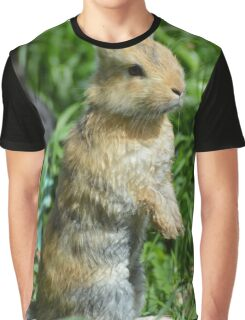 Cornellius the most entertaining bunny ever Graphic T-Shirt