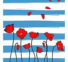 Poppy on blue background Photographic Print