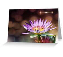 lilies and light 5 Greeting Card