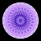 Vanilla Lily Mandala II by Michael Matthews